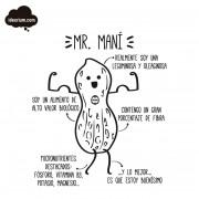 ideorium-mr-mani